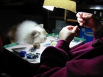 Beading with my faithful assistant. :-) January 26 ~ 2008